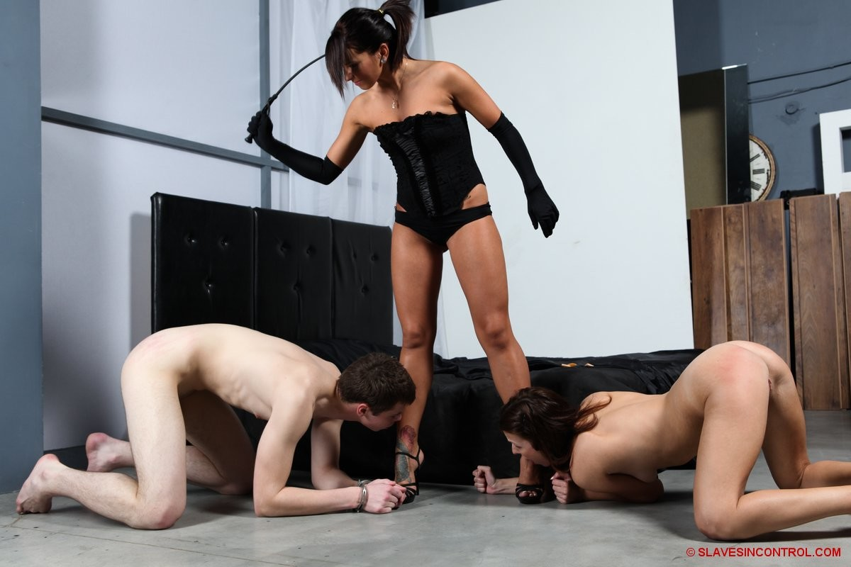 Create your perfect bdsm contract