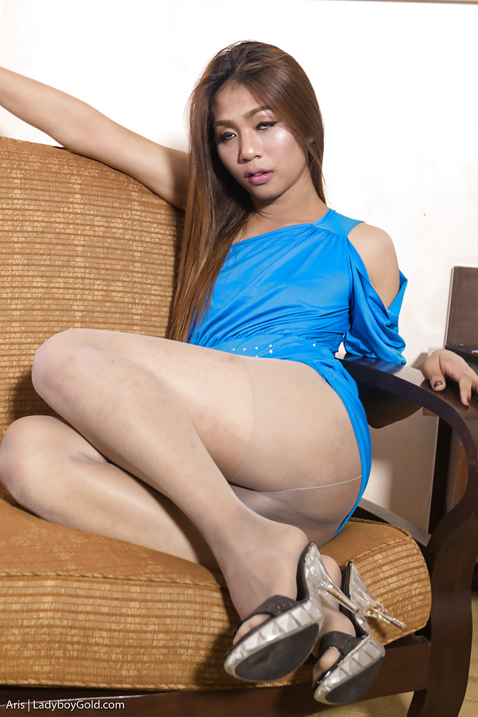 Asian ladyboy stockings free pictures